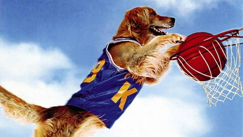 Air Bud is probably the best basketball player of all time.Photo taken from Disney Wiki