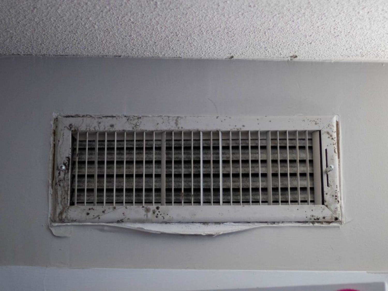 Mold growing on a vent in Granville Towers on Friday, Oct. 11, 2019. Residents have recently discovered mold in Granville Towers, forcing the Granville administration to relocate some residents to area hotels.