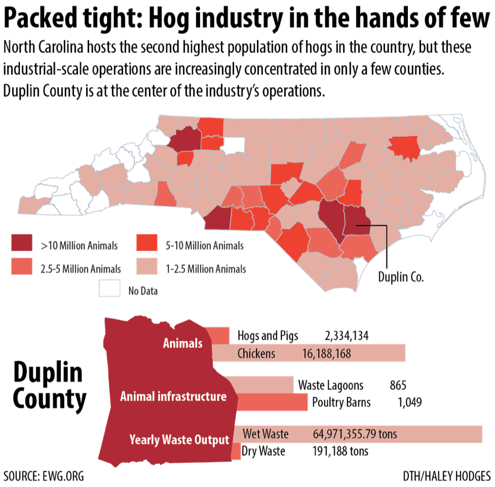 'The smell of money:' Florence adds to environmental concerns over hog farming