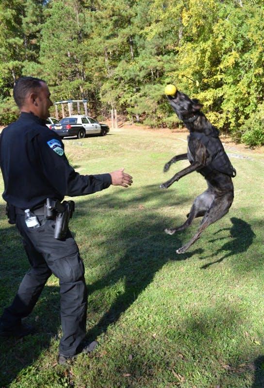 Officer David Funk plays with Police Dog Stich. Photo courtesy of Caroline Levine.