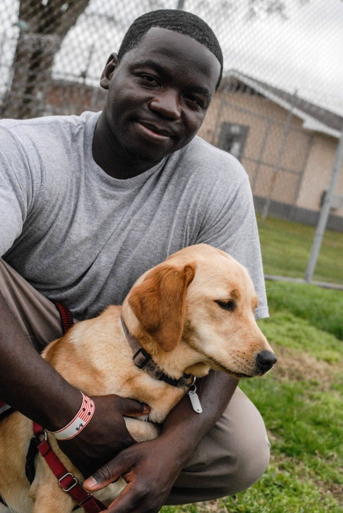 Carrboro nonprofit ABEL works with inmates to train these very good service dogs