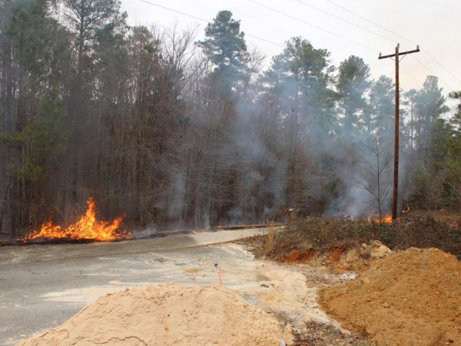 The Chapel Hill Fire Department and the North Carolina forest service did a control burn on Thursday. Photo courtesy of Ryan Pecaut.