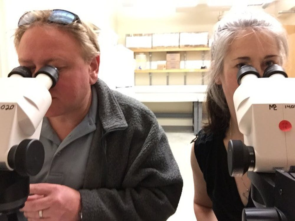 Love is in the lab? UNC professors share stories of working alongside spouses