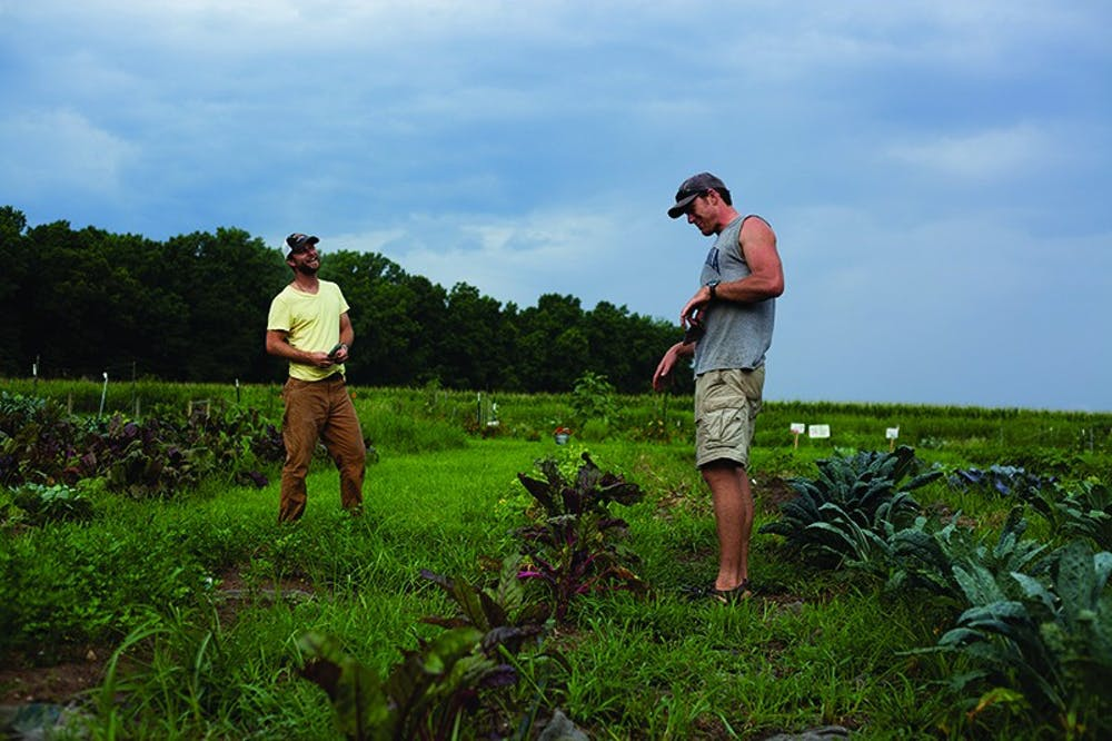 """<p>Owner of <span class=""""caps"""">GPC</span>, Daniel Whittaker and Farm Manager, Stephen Ratasky, enjoying a laugh while standing in the summer crop field. Courtesy of Kacy Johnson.</p>"""