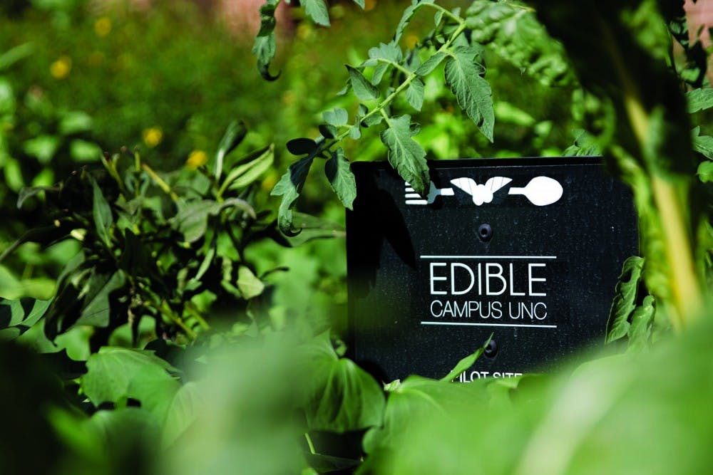 <p>Edible Campus, with one site in front of Davis Library, works to help students know where their food is coming from.</p>