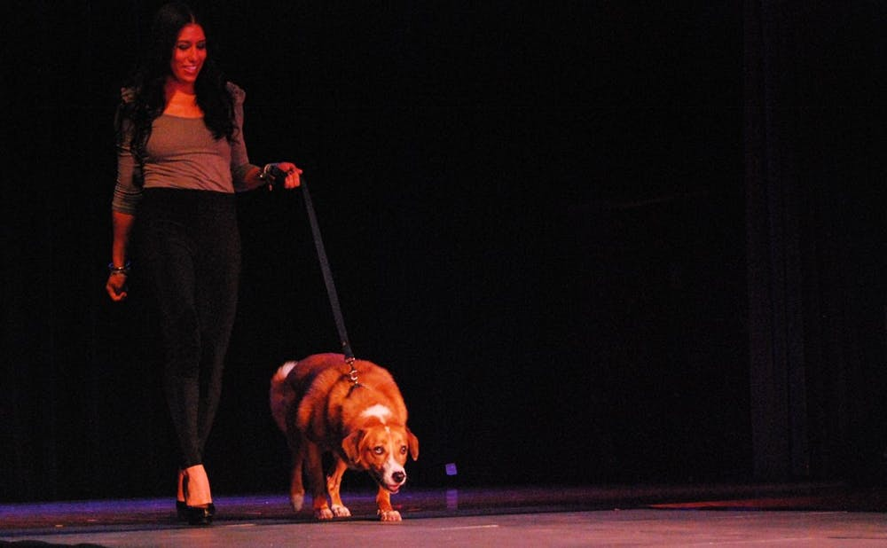 Helping Paws fashion show benefits Animal Services Center