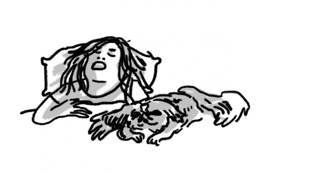 Column: What's up, I love my dog