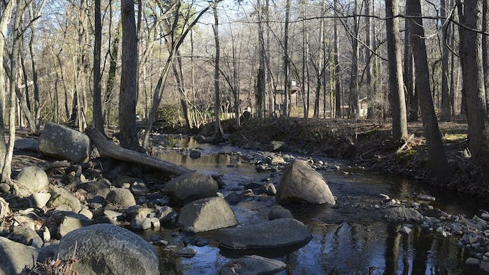 Bolin Creek weaves alongside the trails, with neighborhood homes visible in the background. A documentary has recently been released on the conservation  of the creek.