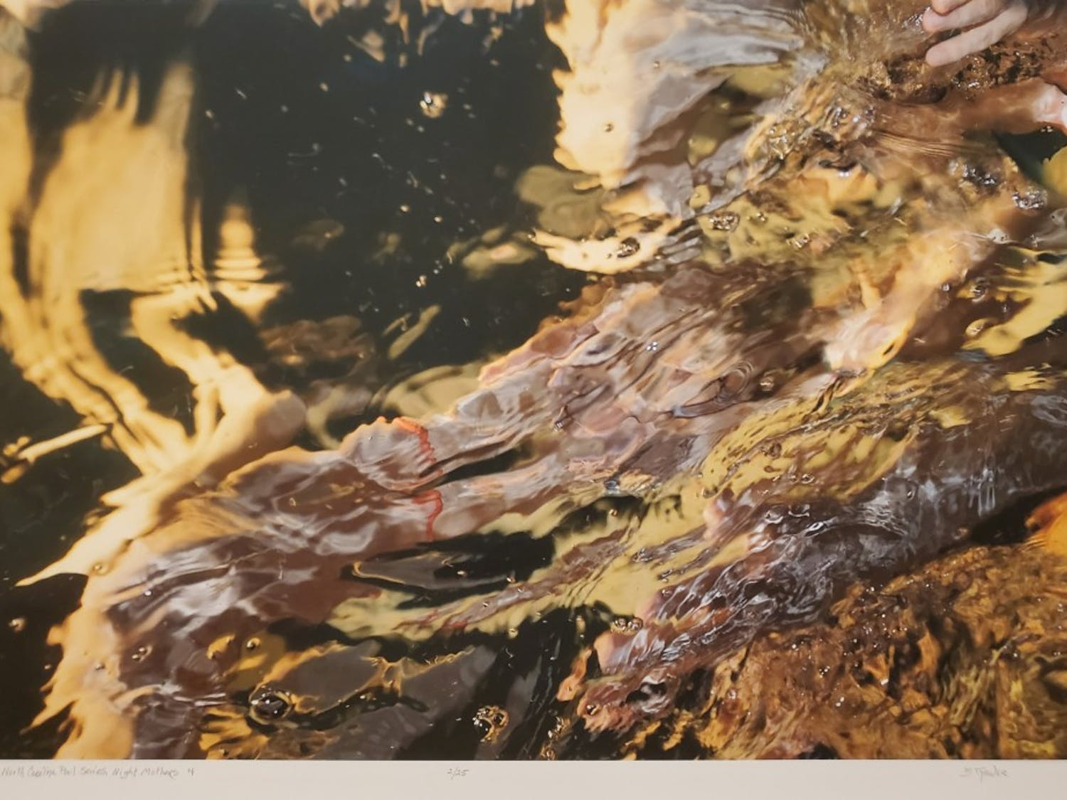 Photo of Barbara Tyroler's work on display at the FRANK Gallery.