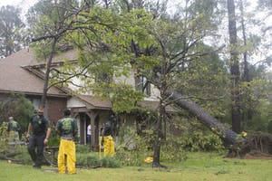 A huge tree uprooted by hurricane Florence landing in the top story of a home in the Lansdowne neighborhood in Wilmington, North Carolina. Numerous tree removal services have converged on Wilmington from across the country to help with the cleanup and recovery efforts due to hurricane Florence. The Tree Service LLC, a tree removal company from Sauder, Mississippi, assesses tree damage to a home and begins the removal process at the Lansdowne residence on Saturday, September 15th.
