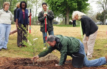 """Carrboro Environmental Planner Randy Dodd plants a sapling in a [water catchment bed] designed to filter runoff entering the Bolin Creek on April 9. Officials from Carrboro and Chapel Hill dedicated April 9, 2011 as """"Bolin Creek Day"""" in recognition of completing the first restoration project for the creek."""