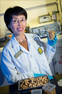 Dr. Jianmei Yu, a food science researcher in the College of Agriculture and Environmental Sciences at N.C. A&T,  who has patented research into decreasing allergens in peanuts. The process retains the quality and functionality of whole, roasted peanuts, and can easily be integrated into existing food production processes.