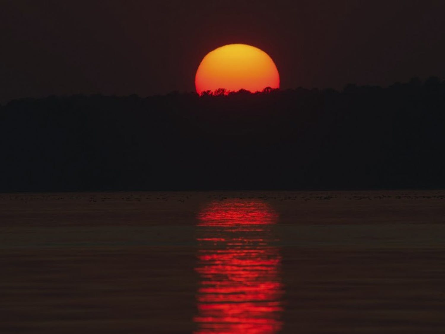Students have enjoyed the recent warm weather and have taken advantage by doing things such as watching the sunset over Jordan Lake.