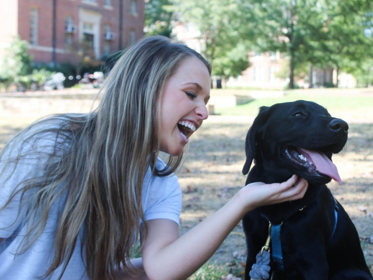 Junior exercise and sports science major Ashley Young petting Dean, the black lab puppy she is fostering with her roommate until January. In January, Dean will be trained to be a mobility service dog.