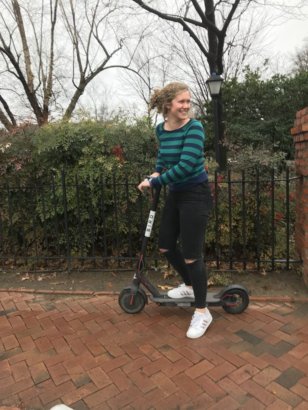 Are electric scooters coming back to Chapel Hill?