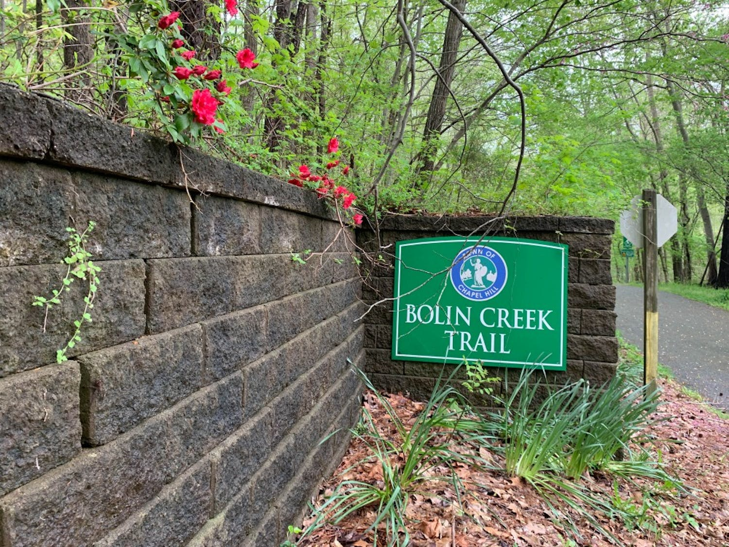 The Bolin Creek Trail is a paved trail that runs through forests and under bridges in the Chapel Hill Community.