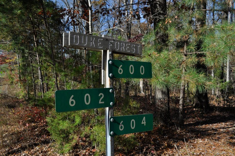 A sign marks the beginning of Duke Forest located along Eubanks Road on Sunday, Nov. 24, 2019. Plans of developing land near the corner of Eubanks Road and Old NC 86 raised concerns from residents about how Duke Forest's research and natural sites would be affected.