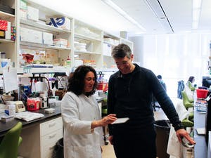 Dr. Matthew Redinbo,  a professor of chemistry, and Dr. Aadra Bhatt, a professor of medicine, view prepared plates in the Redinbo Lab located in the Genome Science Building on Monday, Feb. 25, 2019.