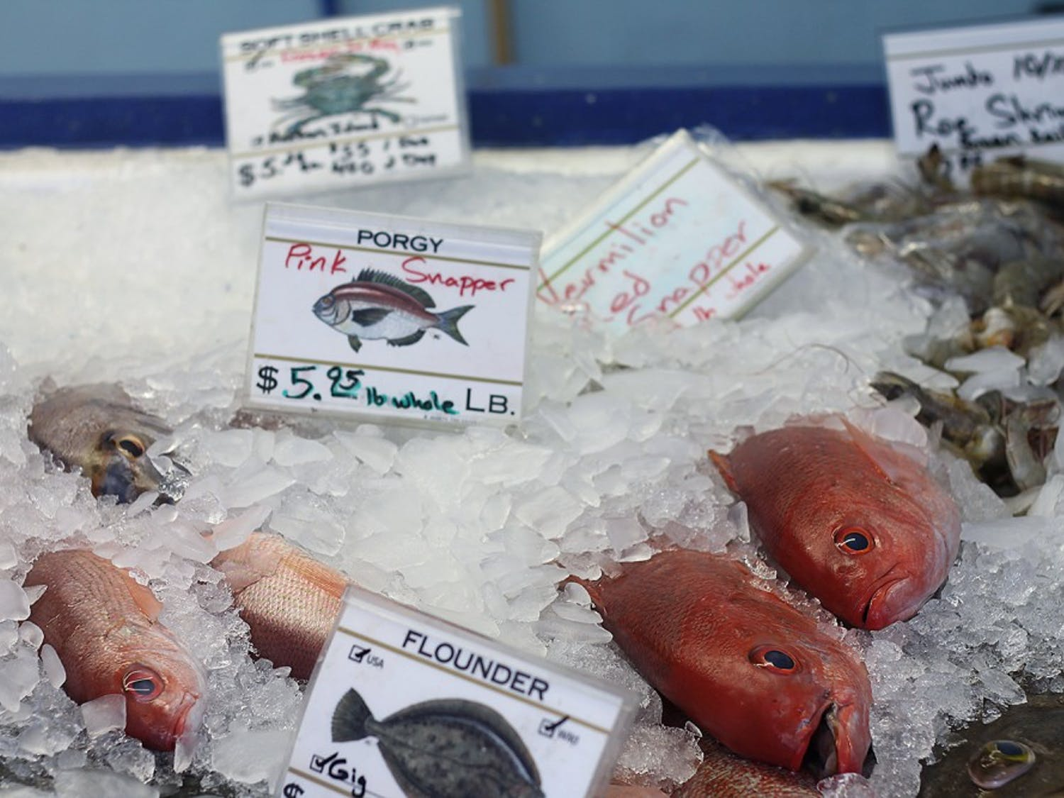 Blue Ocean Market provides seasonal seafood, including fish like pink and vermillion red snapper (above), to restaurants and consumers near its location in Morehead City and to the Triangle area.