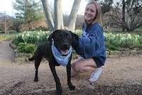 """Sarah Leck, a junior majoring in photojournalism, plays with her 1.5 year old dog named Gracie, more often called """"Dingus."""""""