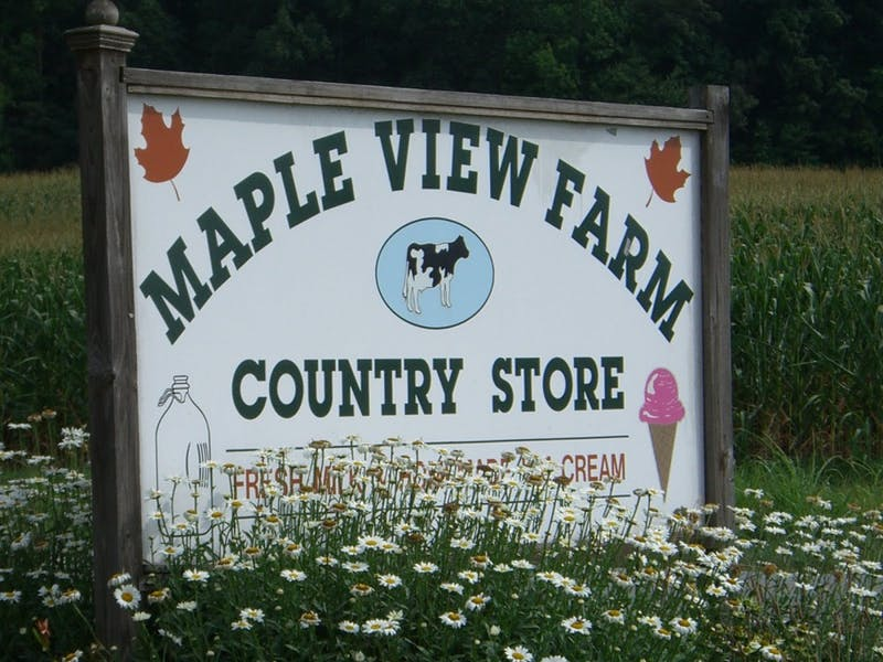 6200_maple_viewf.jpg