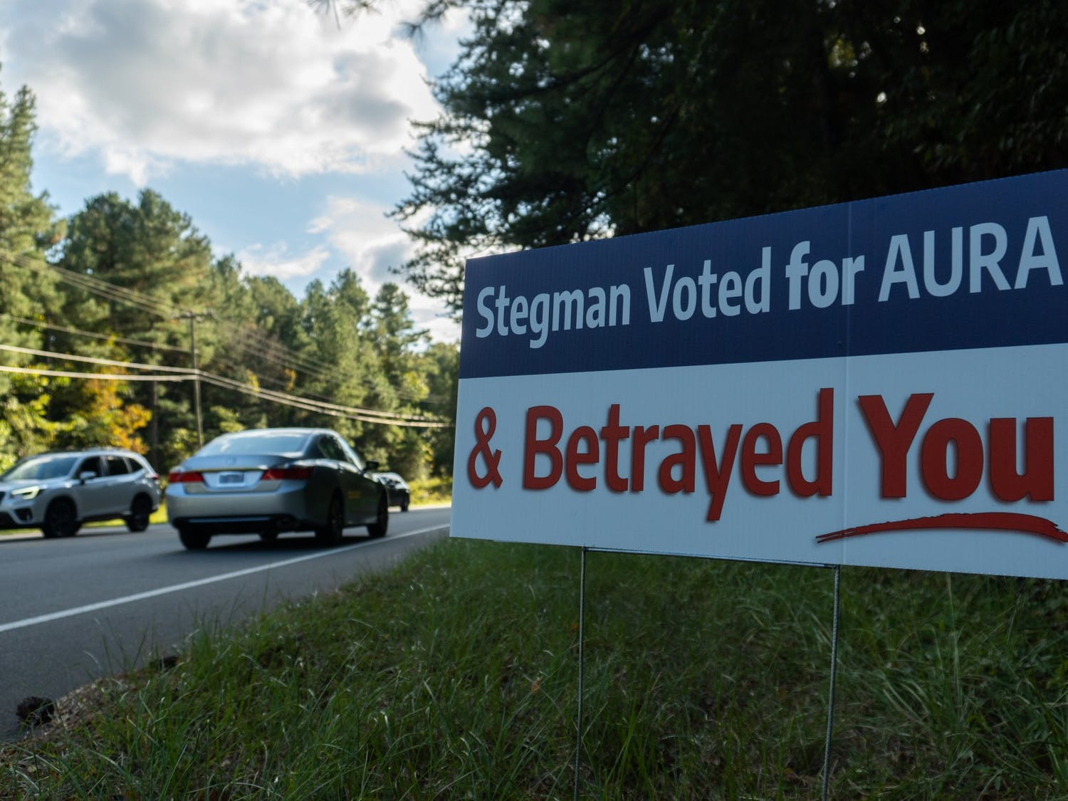 Anonymous road signs along Estes Dr. and Village Dr. criticize Karen Stegman for betraying Chapel Hill.