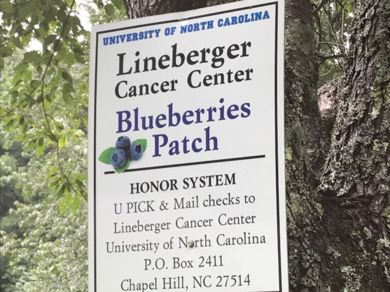 This sign hangs from a cherry tree at Hatchell's blueberry patch and outlines how visitors can donate.