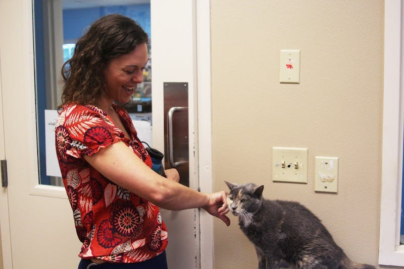 Laura Griest, the executive director of Paws4Ever, pets one of the non-profit's cats, Fajita, as she leads a tour of the compound.