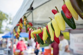 Chapel Hill's 11th annual Pepper Festival will be on Sunday Sept. 23. Photo courtesy of Tami Schwerin.