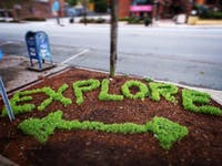 Artist Carter Hubbard created natural art on side walks in Chapel Hill. Photo Courtesy of Carter Hubbard.