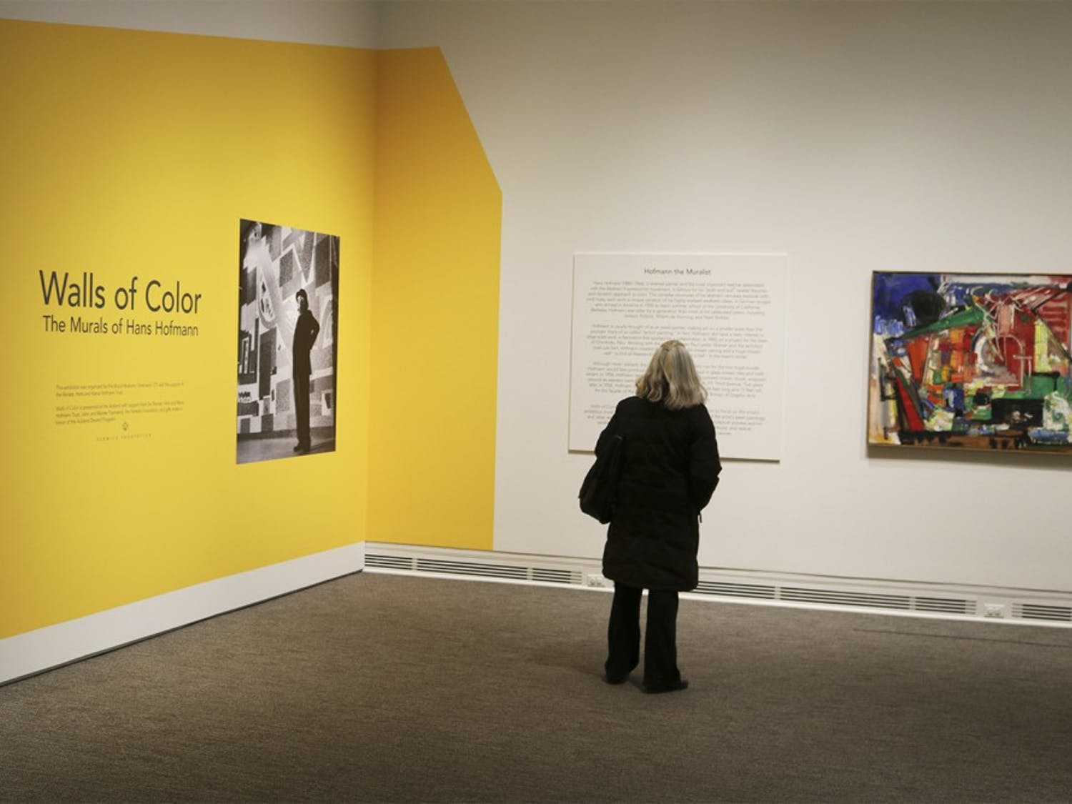 Susan Mcmichaels, a member of the Chapel Hill community, observing the exhibit Walls Of Colors: The Murals of Hans Hofmann, opened at the Ackland Art Museum until Apr. 10th.