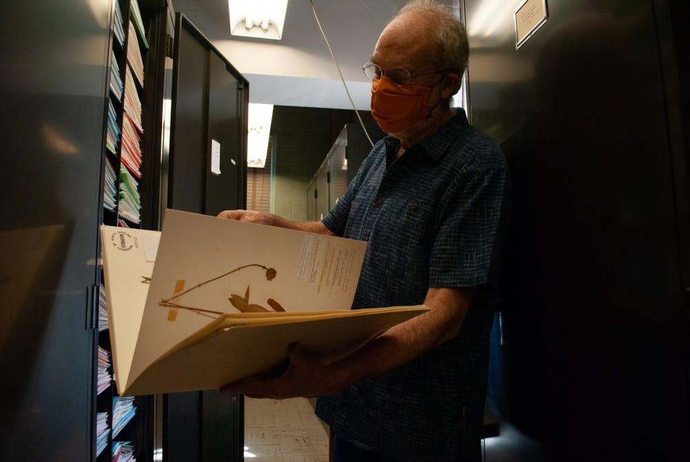 Alan Weakley flips through a file of North Carolina plant species in the UNC Herbarium.