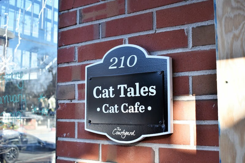 Owners Katy Poitras and Ilene Speizer are hoping to open the Cat Tales Cat Cafe in February. The cafe will have two areas specifically designated for interacting with the animals and eating food.