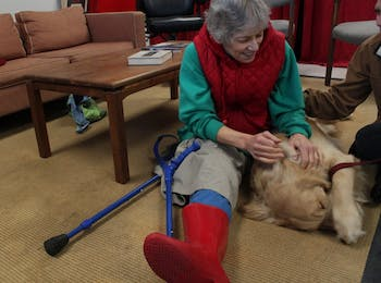 Carla Shuford of Chapel Hill plays with Mac, an 11-month-old Golden Retriever assistance dog. Shuford came to the Eyes Ears Nose and Paws open house to check out the program and see if she could qualify for an assistance dog. Mac was her overwhelming favorite.