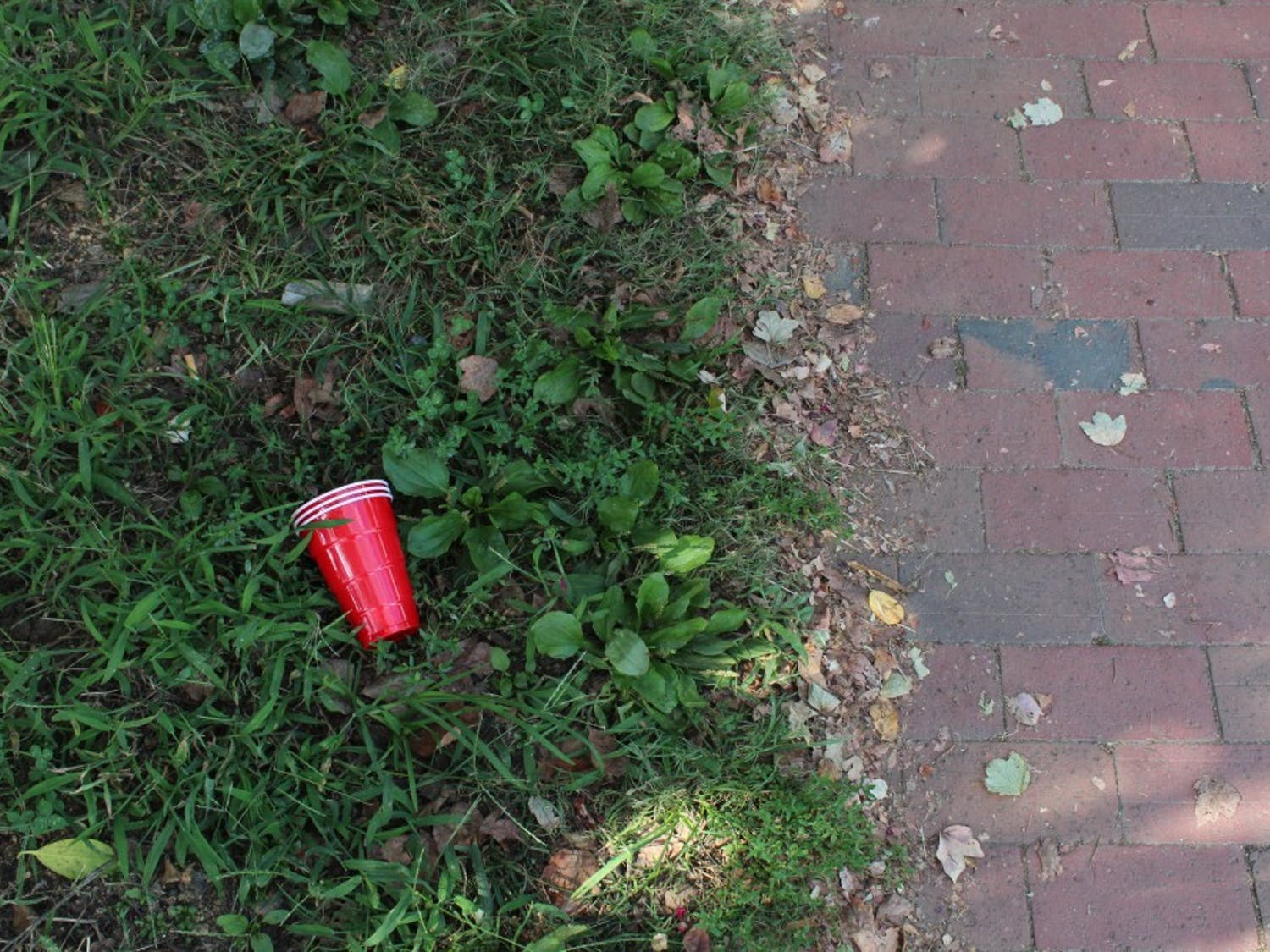 """Cups get abandoned on lawns by Fraternity Court on Tuesday, Oct. 9, 2018. """"If a student gets charged with an alcohol offense, they do not have to immediately rush out there and spend $500 on an attorney,"""" Tristan Routh said. """"They can go in on their own very easily and just ask for a deferred prosecution agreement."""""""