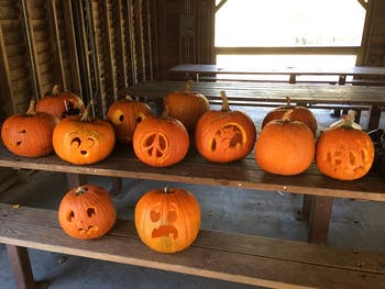 Pumpkins featured at a previous Hallow-eno event. Photo courtesy of Cassandra Bennett.