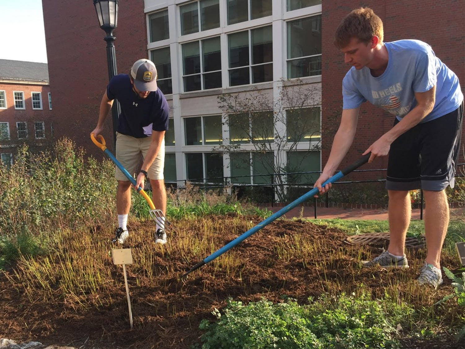 (From left)William Welbourne, a junior biology major and Danny Kelly, a senior history major, tend to a medicinal garden located near the Health Sciences library.