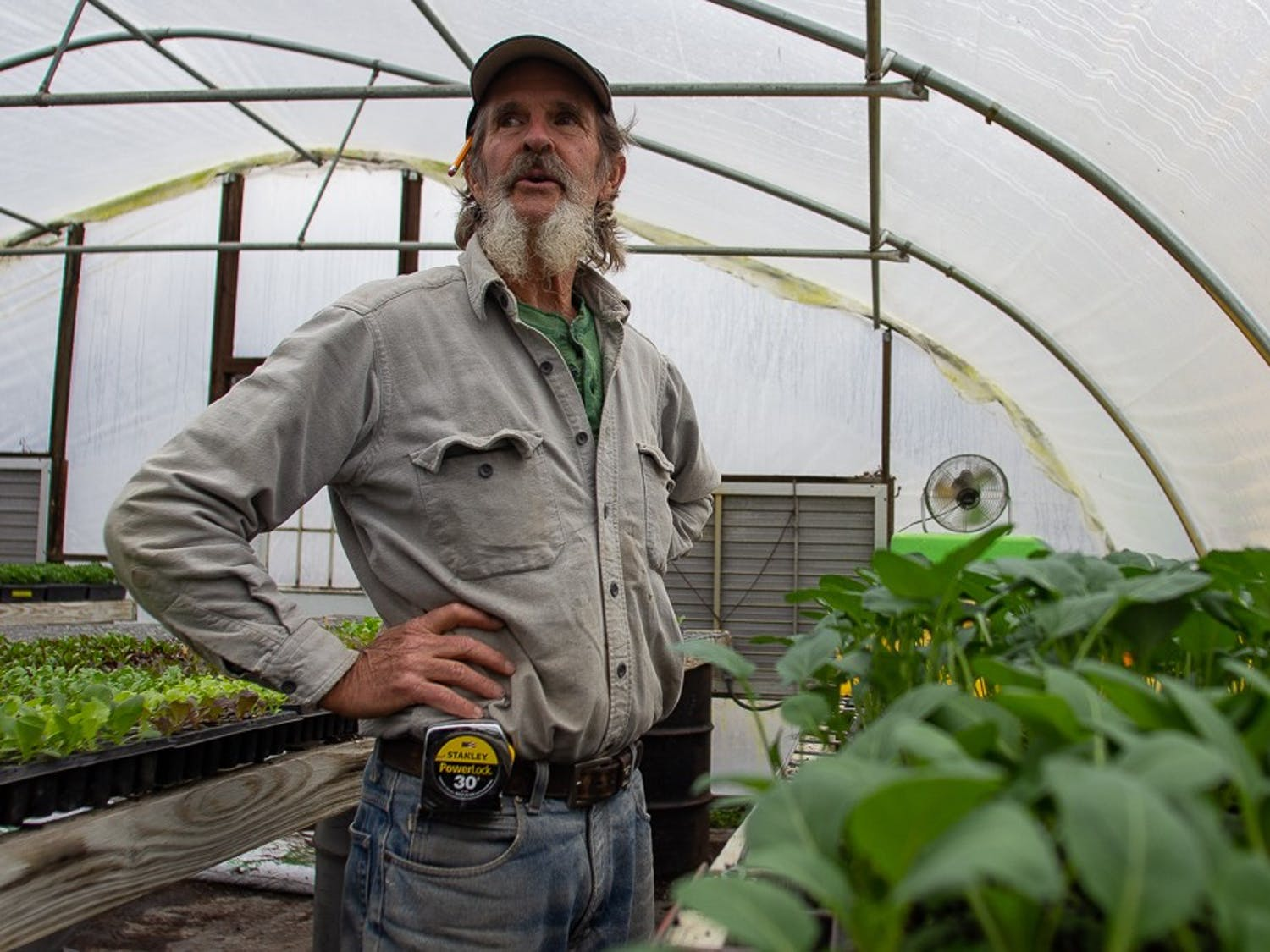 Orange County resident Ken Dawson, 69, stands in one of his greenhouses on Wednesday, Feb. 12, 2020. Dawson has been living in the Cedar Grove community since 1972 and has been on the board of both the Carrboro and Durham farmers markets.