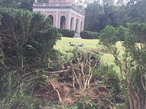 A police chase led to a crash near the bell tower on campus on Sunday afternoon.