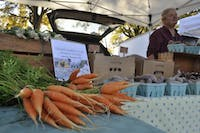 Sally Jo Slusher of Plow Girl Farm sells produce at The Chapel Hill Farmers' Market on Tuesday Nov. 6, 2018.