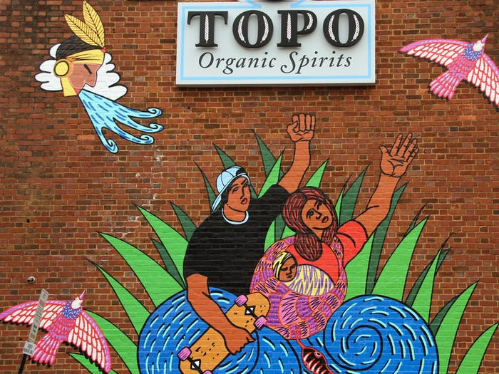 Successions by Renzo Oretega is at the TOPO distillery on West Franklin st.