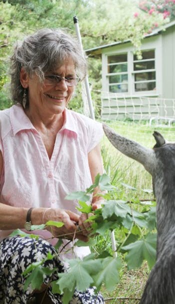Filmmaker Barbara Trent feeds one of her goats at The Old Oak Homestead in July 2011. Trent will screen a film on campus today.