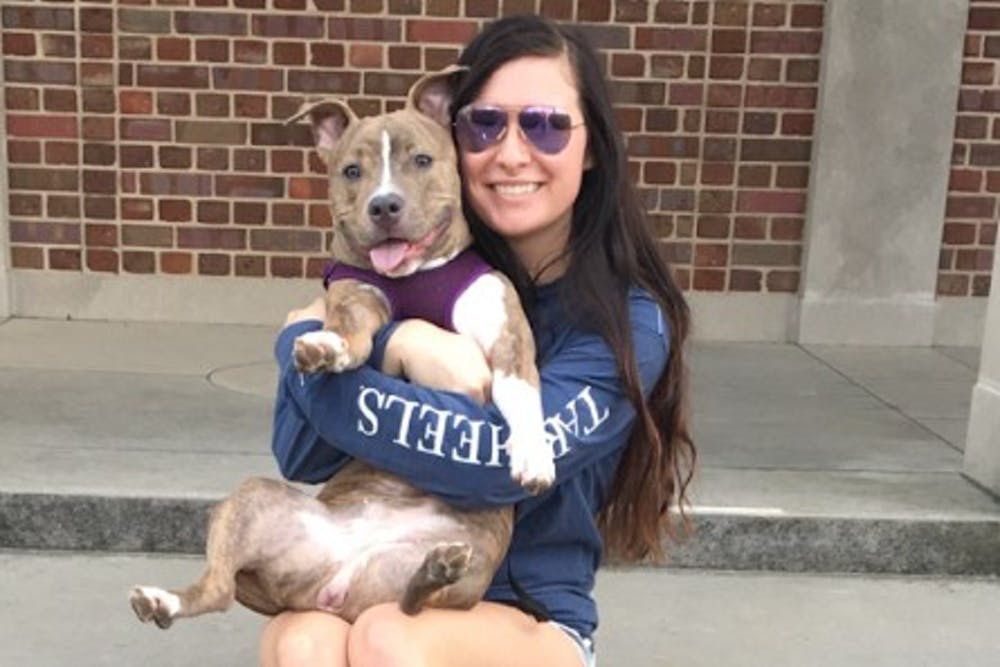 UNC student's bully puppy wins hearts of all