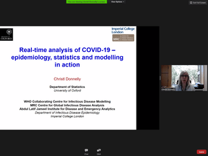 Professor and statistical epidemiology specialist Christl Donnelly detailed her experiences tracking COVID-19 to students enrolled in the Carolina Away program and the public on Monday, Sept. 14, 2020 over Zoom. Donnelly is the deputy head of the department of statistics at Oxford University and a specialist in statistical epidemiology at Imperial College London.