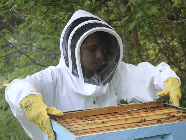 Junior Bronwyn Fadem recently started beekeeping to help protect the honeybee population.