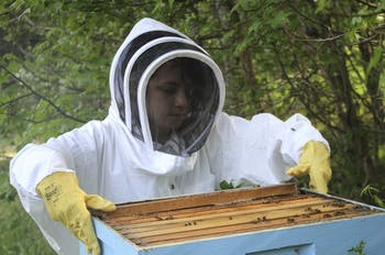 Junior Bronwyn Fadem recently started beekeeping to help protect the honeybee population.
