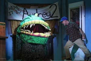 "Brian Fisher plays Seymour in Raleigh Little Theatre's production of ""Little Shop of Horrors."" Photo by Areon Mobasher."