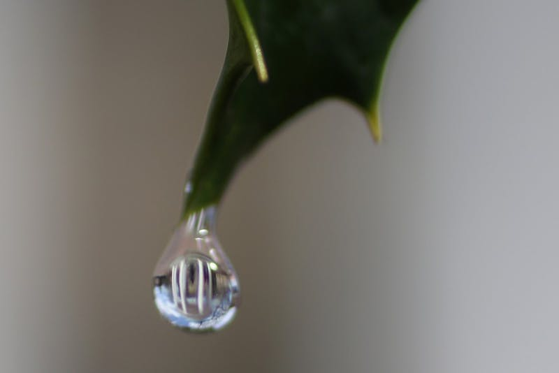A water droplet reflects the Old Well. UNC has a newgoal to bring net water usage down to zero.