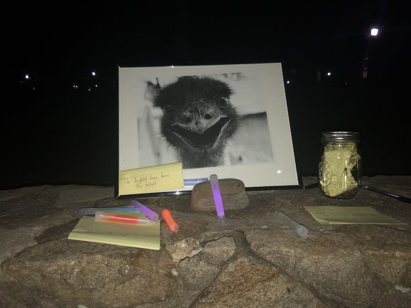 Students and community members gathered on Sunday night for a vigil to remember Eno the emu.