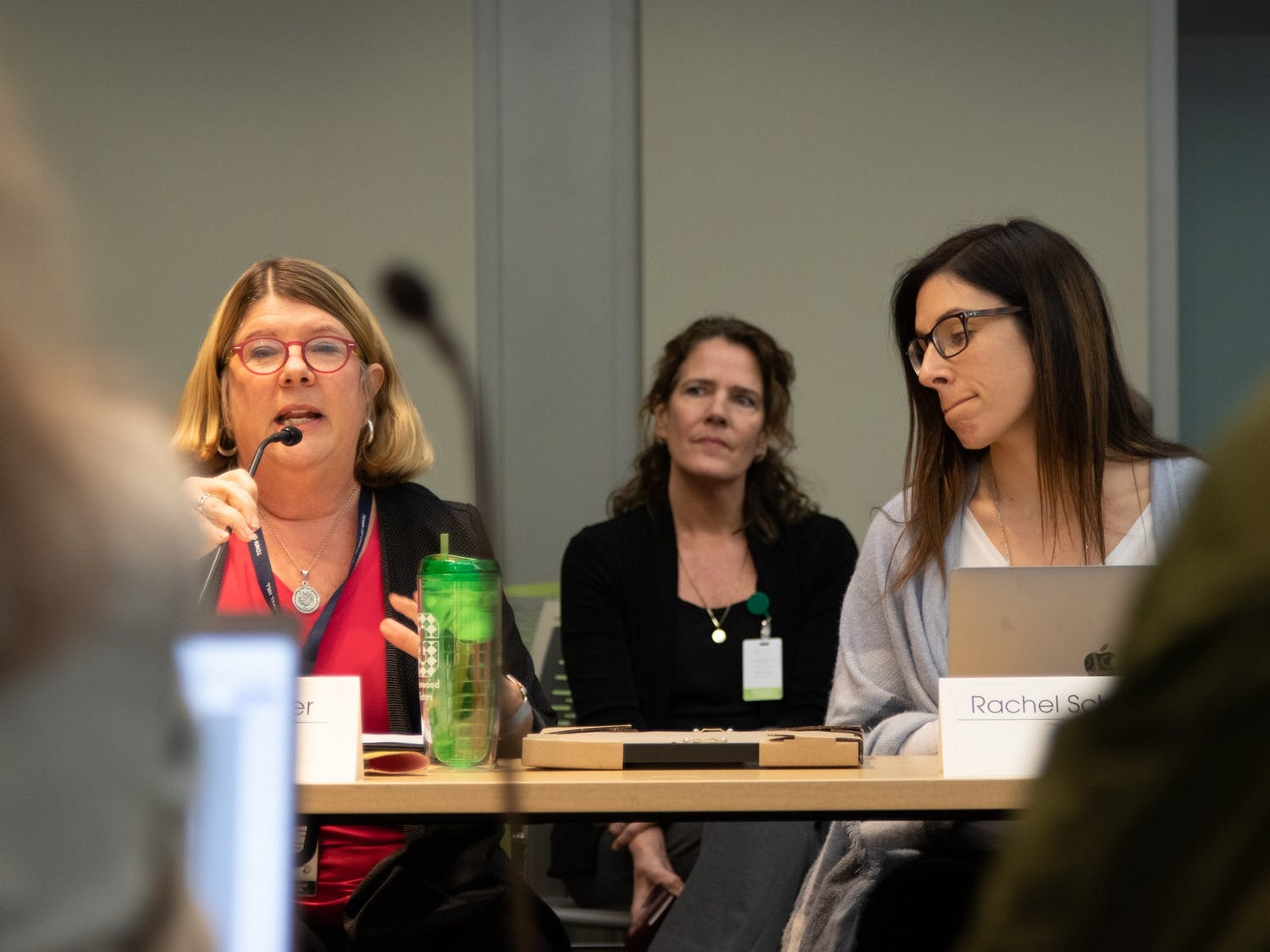 Chapel Hill Mayor Pam Hemminger speaks alongside council member Rachel Schaevitz during a Chapel Hill Town Council Work Session at the Chapel Hill Public Library on Wednesday, Feb.12, 2020.